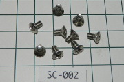 Throttle Shaft Screw